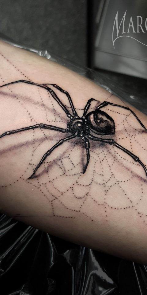 spiderTattoo